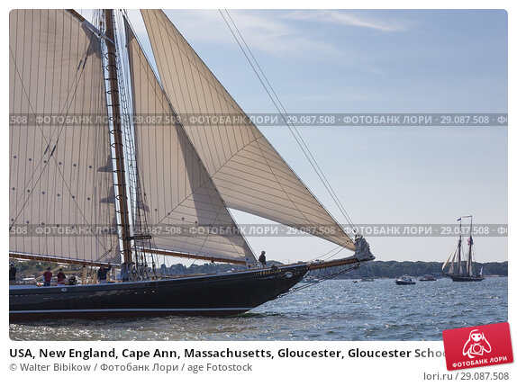 Купить «USA, New England, Cape Ann, Massachusetts, Gloucester, Gloucester Schooner Festival, schooners.», фото № 29087508, снято 4 сентября 2017 г. (c) age Fotostock / Фотобанк Лори