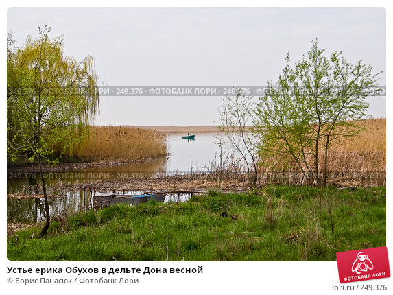Устье ерика Обухов в дельте Дона весной, фото № 249376, снято 11 апреля 2008 г. (c) Борис Панасюк / Фотобанк Лори