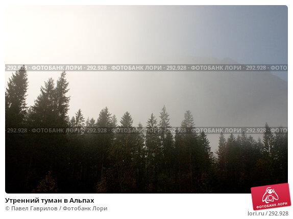 Утренний туман в Альпах, фото № 292928, снято 17 октября 2005 г. (c) Павел Гаврилов / Фотобанк Лори