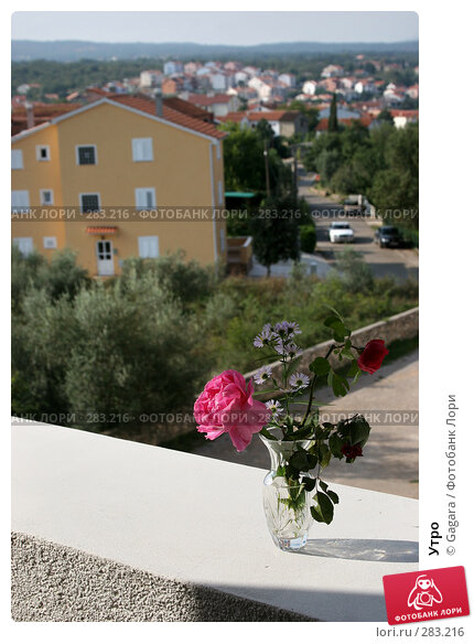 Купить «Утро», фото № 283216, снято 30 сентября 2006 г. (c) Gagara / Фотобанк Лори
