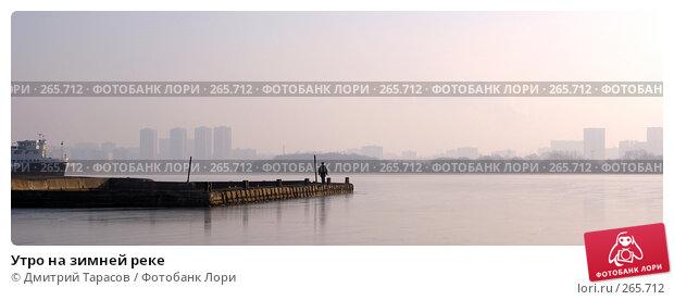 Утро на зимней реке, фото № 265712, снято 1 января 2008 г. (c) Дмитрий Тарасов / Фотобанк Лори