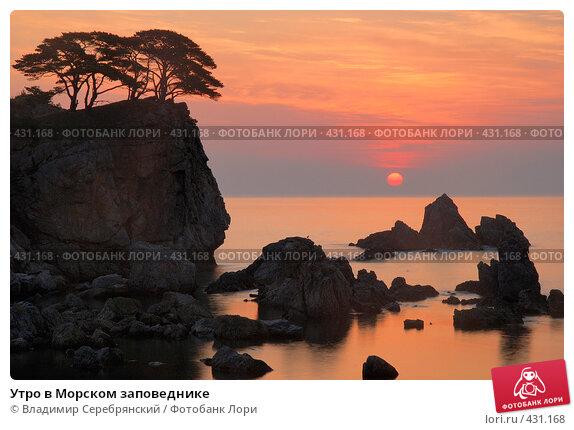 Купить «Утро в Морском заповеднике», фото № 431168, снято 14 сентября 2007 г. (c) Владимир Серебрянский / Фотобанк Лори