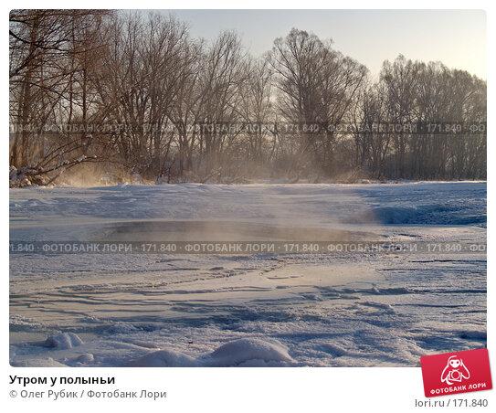 Утром у полыньи, фото № 171840, снято 8 января 2008 г. (c) Олег Рубик / Фотобанк Лори