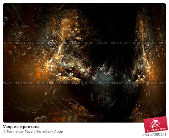Купить «Узор из фрактала», иллюстрация № 255248 (c) Parmenov Pavel / Фотобанк Лори