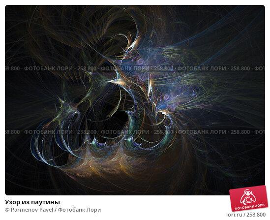 Узор из паутины, иллюстрация № 258800 (c) Parmenov Pavel / Фотобанк Лори