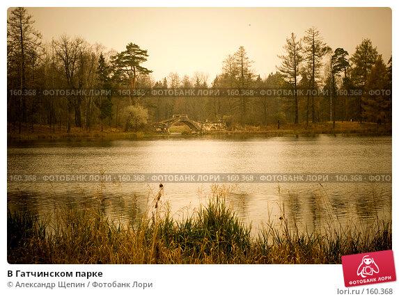 В Гатчинском парке, эксклюзивное фото № 160368, снято 28 октября 2007 г. (c) Александр Щепин / Фотобанк Лори