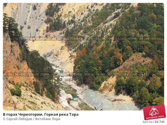 Купить «В горах Черногории. Горная река Тара», фото № 84744, снято 29 августа 2007 г. (c) Сергей Лебедев / Фотобанк Лори