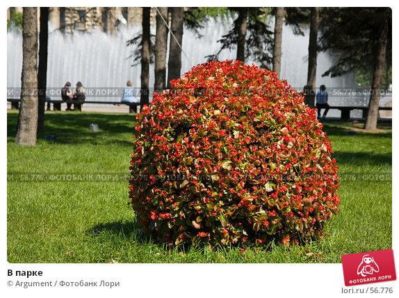 Купить «В парке», фото № 56776, снято 5 июня 2007 г. (c) Argument / Фотобанк Лори