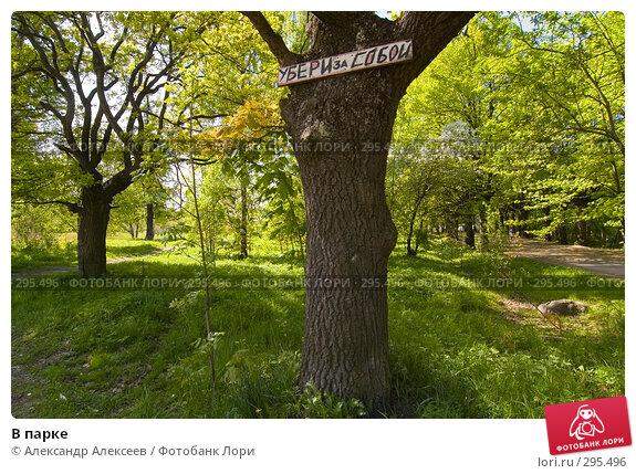 В парке, эксклюзивное фото № 295496, снято 22 мая 2008 г. (c) Александр Алексеев / Фотобанк Лори