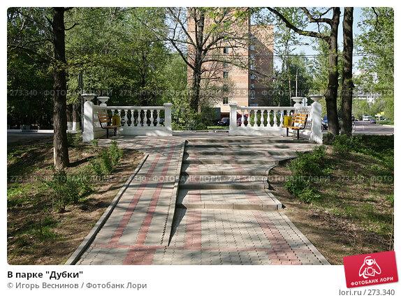 """В парке """"Дубки"""", фото № 273340, снято 4 мая 2008 г. (c) Игорь Веснинов / Фотобанк Лори"""