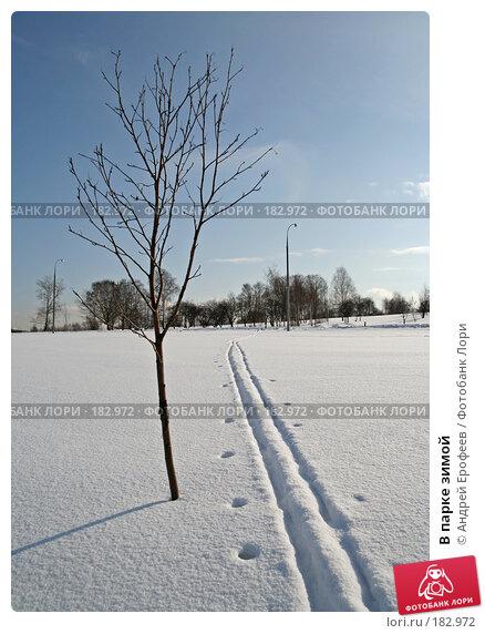 В парке зимой, фото № 182972, снято 27 февраля 2006 г. (c) Андрей Ерофеев / Фотобанк Лори