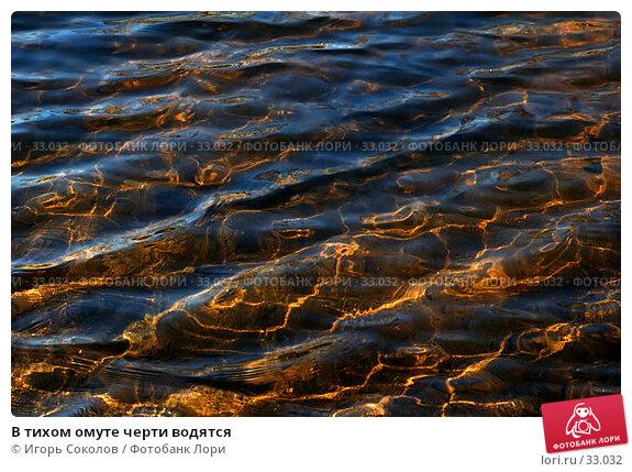 В тихом омуте черти водятся, фото № 33032, снято 18 января 2017 г. (c) Игорь Соколов / Фотобанк Лори