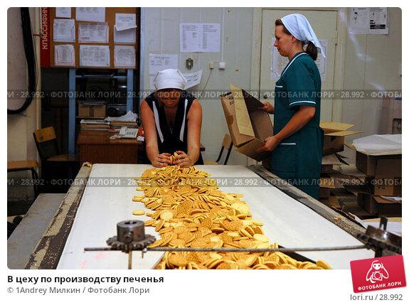 В цеху по производству печенья, фото № 28992, снято 19 июля 2006 г. (c) 1Andrey Милкин / Фотобанк Лори