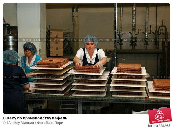 В цеху по производству вафель, фото № 28988, снято 26 апреля 2017 г. (c) 1Andrey Милкин / Фотобанк Лори