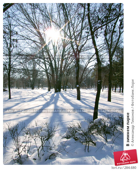 В зимнем парке, фото № 284680, снято 28 января 2006 г. (c) Александр Тихонов / Фотобанк Лори