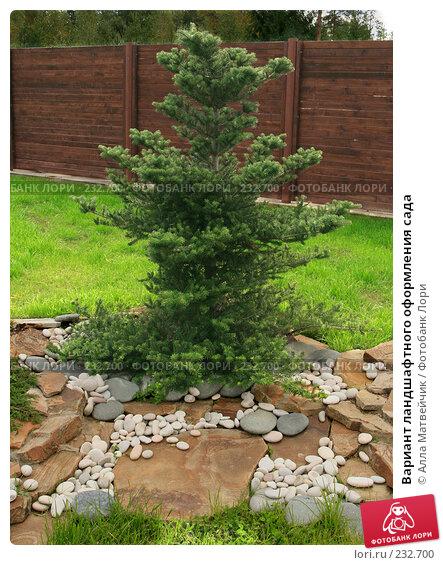 Купить «Вариант ландшафтного оформления сада», фото № 232700, снято 8 сентября 2007 г. (c) Алла Матвейчик / Фотобанк Лори