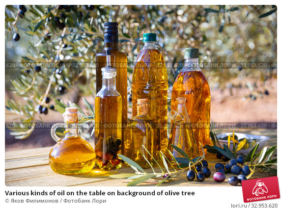 Various kinds of oil on the table on background of olive tree. Стоковое фото, фотограф Яков Филимонов / Фотобанк Лори