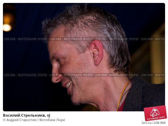 Василий Стрельникв, vj, фото № 238984, снято 10 декабря 2016 г. (c) Андрей Старостин / Фотобанк Лори