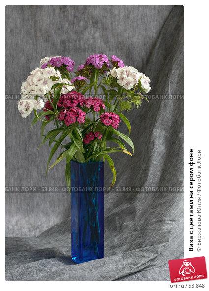Ваза с цветами на сером фоне, фото № 53848, снято 19 июня 2007 г. (c) Биржанова Юлия / Фотобанк Лори
