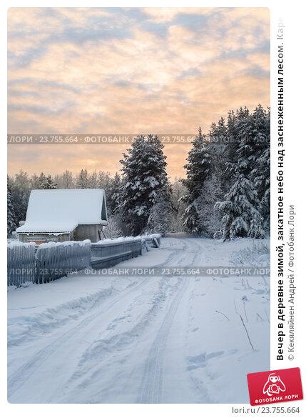 Купить «Вечер в деревне зимой, закатное небо над заснеженным лесом. Карелия, Россия», фото № 23755664, снято 3 января 2011 г. (c) Кекяляйнен Андрей / Фотобанк Лори