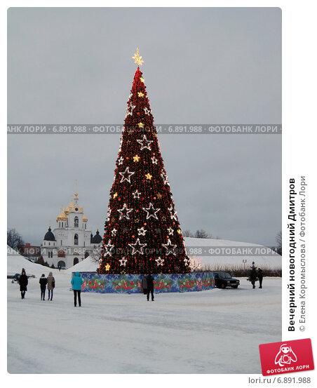 вечерний новогодний дмитров фото навальная приехала