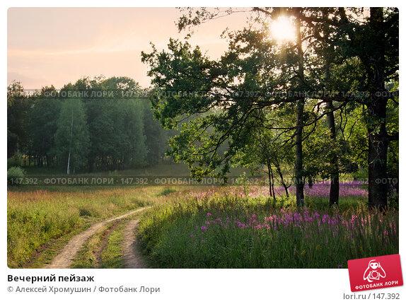 Вечерний пейзаж, фото № 147392, снято 30 июня 2007 г. (c) Алексей Хромушин / Фотобанк Лори