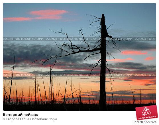 Вечерний пейзаж, фото № 222924, снято 11 августа 2005 г. (c) Егорова Елена / Фотобанк Лори