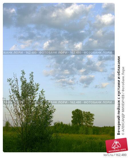 Купить «Вечерний пейзаж с кустами и облаками», фото № 162480, снято 20 июня 2006 г. (c) АЛЕКСАНДР МИХЕИЧЕВ / Фотобанк Лори