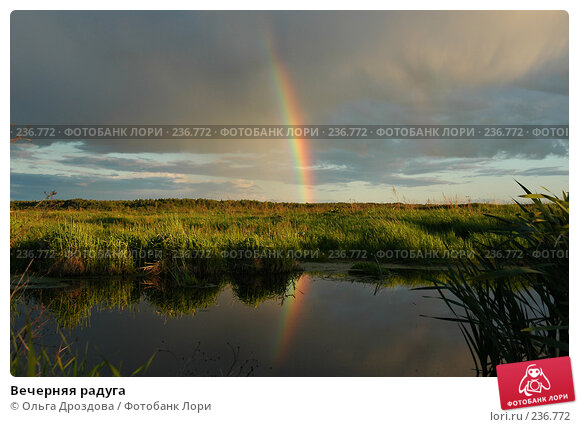Вечерняя радуга, фото № 236772, снято 16 июня 2004 г. (c) Ольга Дроздова / Фотобанк Лори