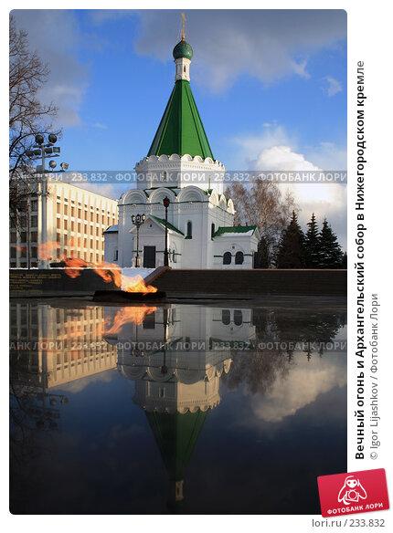 Вечный огонь и Архангельский собор в Нижегородском кремле, фото № 233832, снято 21 марта 2008 г. (c) Igor Lijashkov / Фотобанк Лори