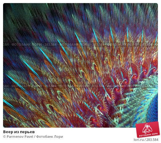 Веер из перьев, иллюстрация № 283584 (c) Parmenov Pavel / Фотобанк Лори