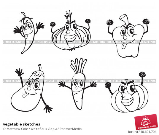 vegetable sketches. Стоковая иллюстрация, иллюстратор Matthew Cole / PantherMedia / Фотобанк Лори
