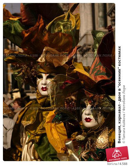 "Венеция, карнавал - двое в ""осенних"" костюмах, фото № 4588, снято 27 февраля 2006 г. (c) Tamara Kulikova / Фотобанк Лори"