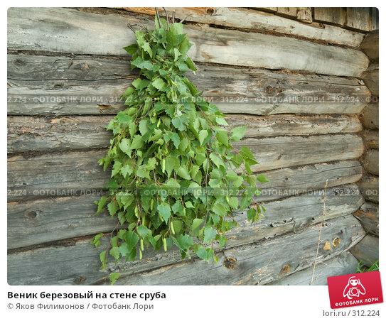 Веник березовый на стене сруба, фото № 312224, снято 30 мая 2008 г. (c) Яков Филимонов / Фотобанк Лори