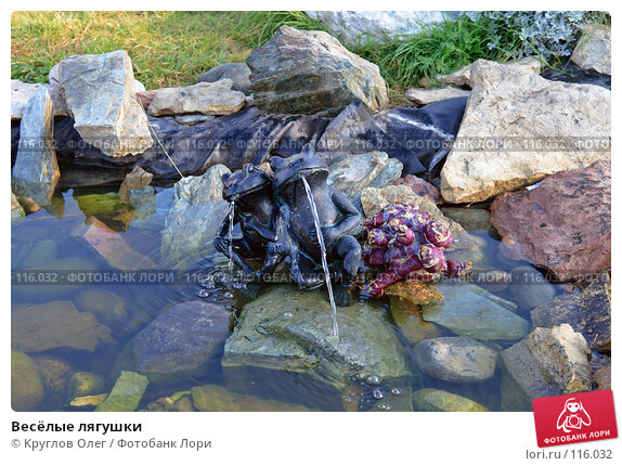Весёлые лягушки, фото № 116032, снято 28 сентября 2007 г. (c) Круглов Олег / Фотобанк Лори