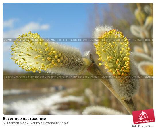 Весеннее настроение, фото № 72940, снято 22 апреля 2007 г. (c) Алексей Маринченко / Фотобанк Лори