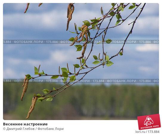 Весеннее настроение, фото № 173884, снято 8 мая 2006 г. (c) Дмитрий Глебов / Фотобанк Лори