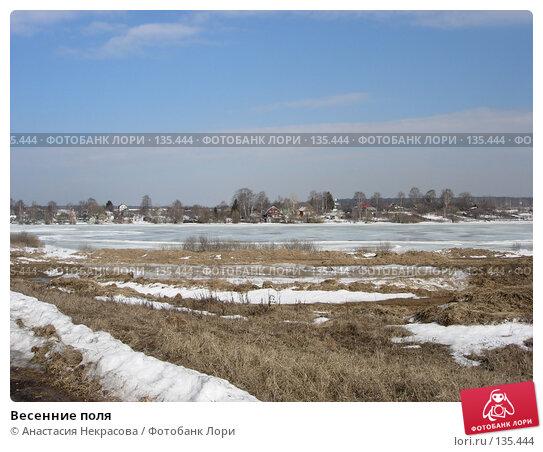 Весенние поля, фото № 135444, снято 4 апреля 2006 г. (c) Анастасия Некрасова / Фотобанк Лори