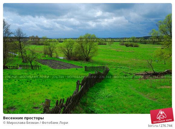 Весенние просторы, фото № 276744, снято 20 апреля 2008 г. (c) Мирослава Безман / Фотобанк Лори