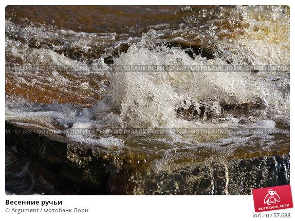 Весенние ручьи, фото № 57688, снято 31 марта 2007 г. (c) Argument / Фотобанк Лори