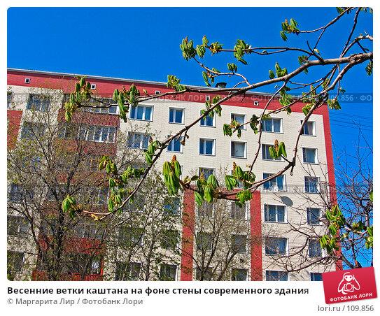 Весенние ветки каштана на фоне стены современного здания, фото № 109856, снято 6 мая 2007 г. (c) Маргарита Лир / Фотобанк Лори