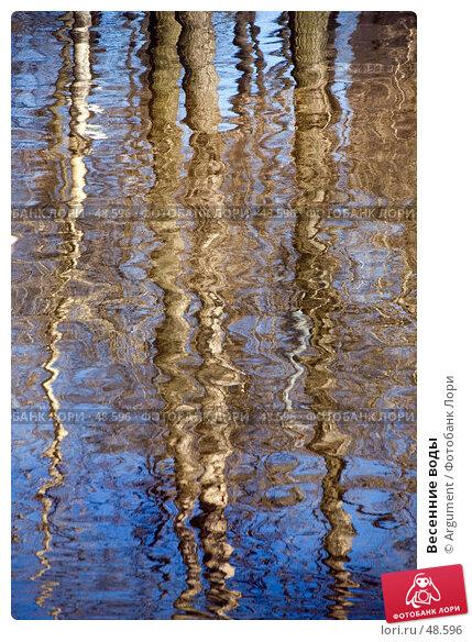 Весенние воды, фото № 48596, снято 28 марта 2007 г. (c) Argument / Фотобанк Лори