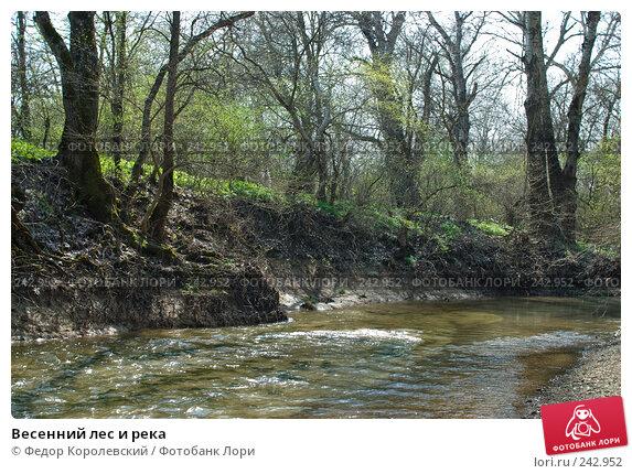 Весенний лес и река, фото № 242952, снято 4 апреля 2008 г. (c) Федор Королевский / Фотобанк Лори