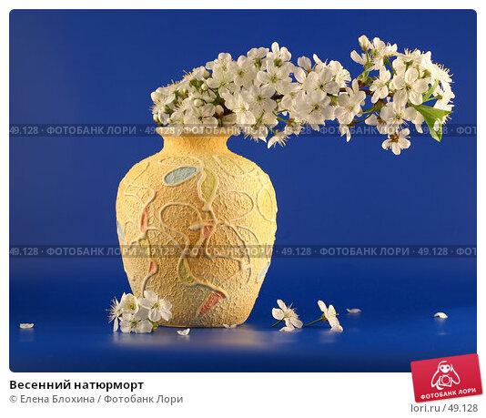 Весенний натюрморт, фото № 49128, снято 13 мая 2007 г. (c) Елена Блохина / Фотобанк Лори
