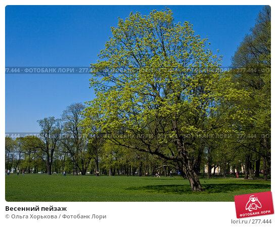 Весенний пейзаж, фото № 277444, снято 4 мая 2008 г. (c) Ольга Хорькова / Фотобанк Лори