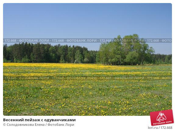 Весенний пейзаж с одуванчиками, фото № 172668, снято 20 мая 2007 г. (c) Солодовникова Елена / Фотобанк Лори