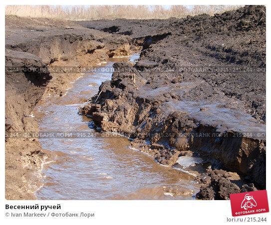 Весенний ручей, фото № 215244, снято 12 апреля 2007 г. (c) Василий Каргандюм / Фотобанк Лори