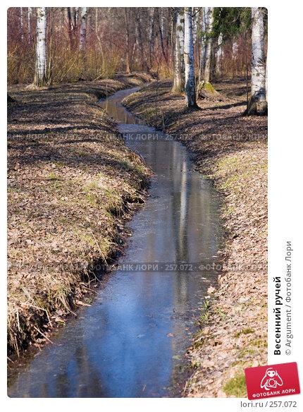 Весенний ручей, фото № 257072, снято 5 апреля 2008 г. (c) Argument / Фотобанк Лори