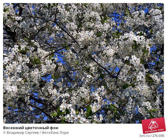Весенний цветочный фон, фото № 276696, снято 21 июля 2017 г. (c) Владимир Сергеев / Фотобанк Лори