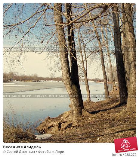 Весенняя Агидель, фото № 238272, снято 27 марта 2008 г. (c) Сергей Девяткин / Фотобанк Лори